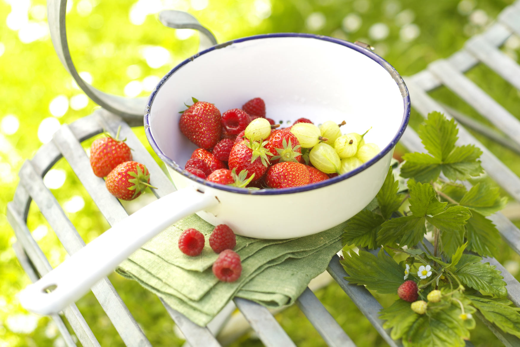 Summer fruits for food website